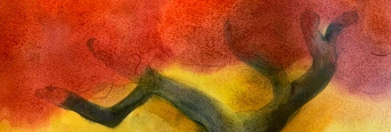 Painting of Acacia tree